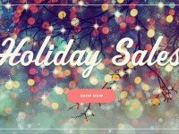 Fencing.Net Holiday Sale