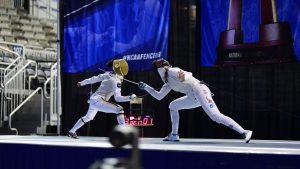 Fencing sport, sport fencing